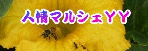 タイトル-ハチ